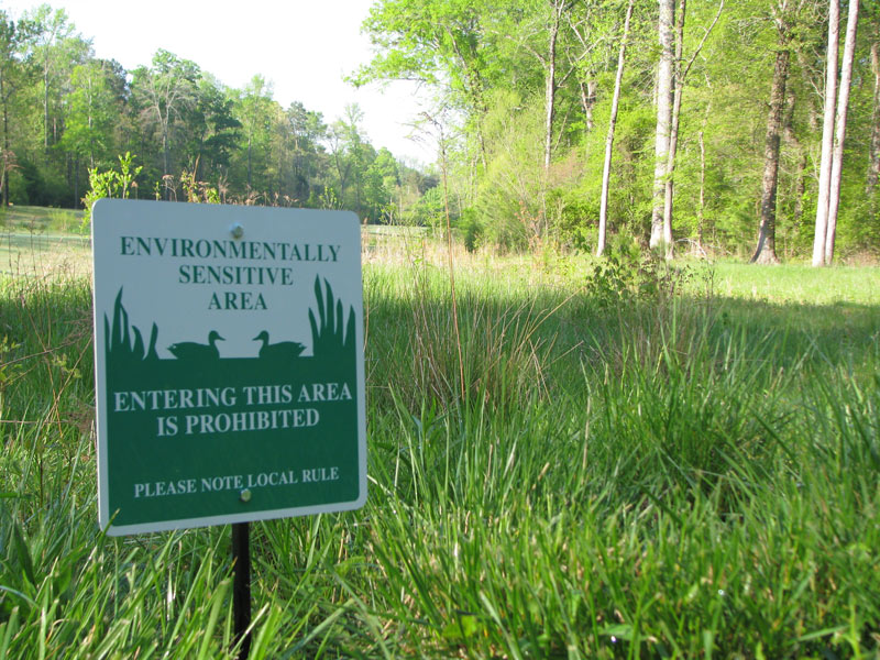 Career: Get an edge with environmental expertise