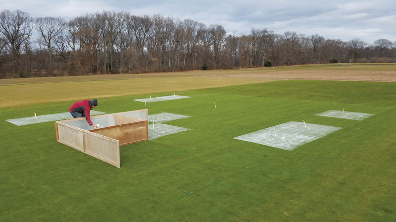 Putting green liming