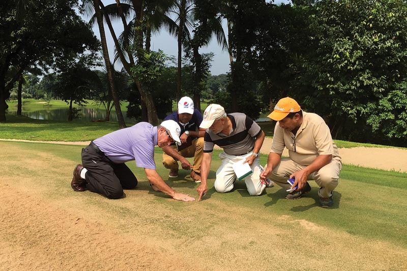 Golf course topdressing