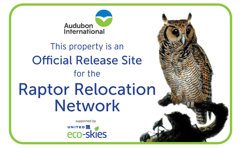 Raptor Relocation Network