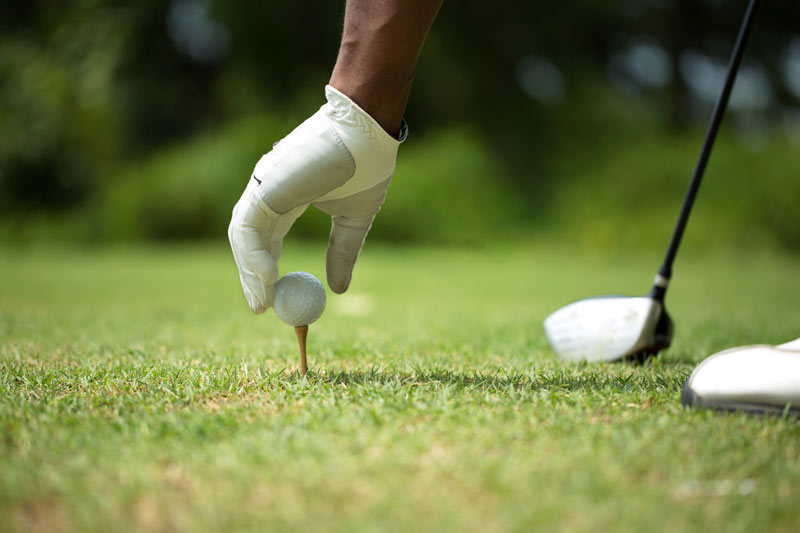 African American Golf Expo