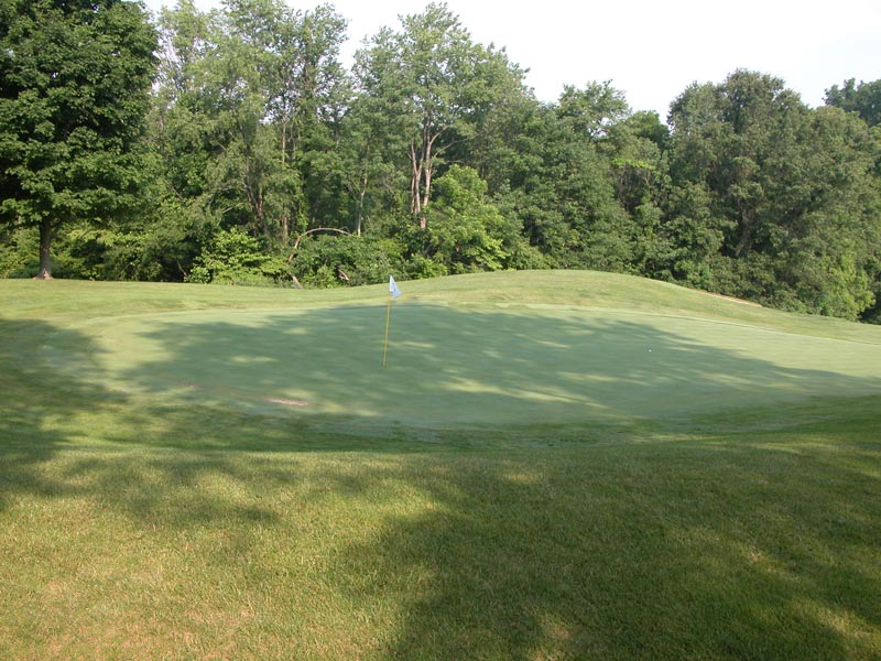 Shaded golf green