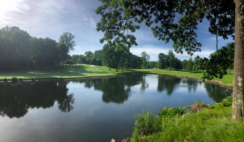 Golf course pond algae