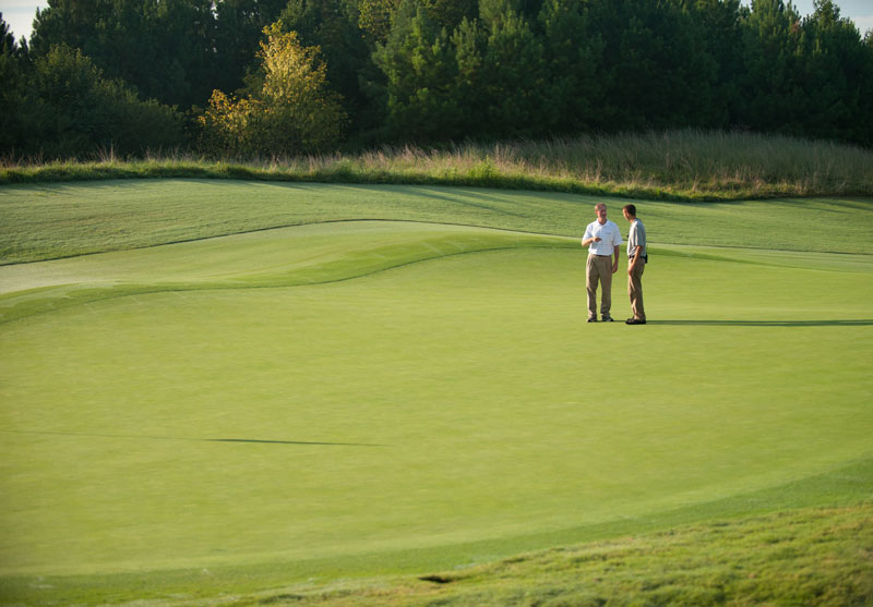 Mentoring golf course management