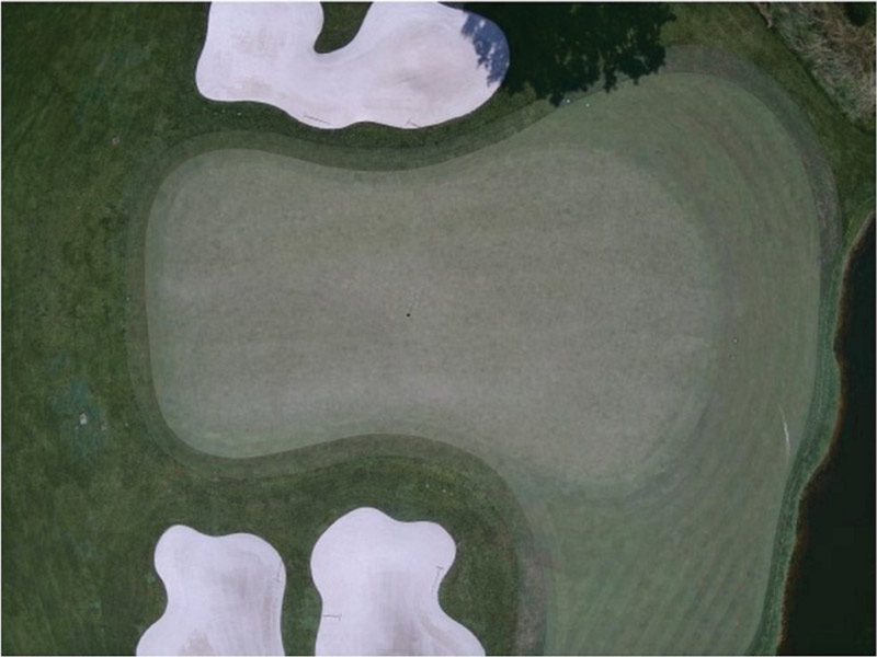 Drone putting green