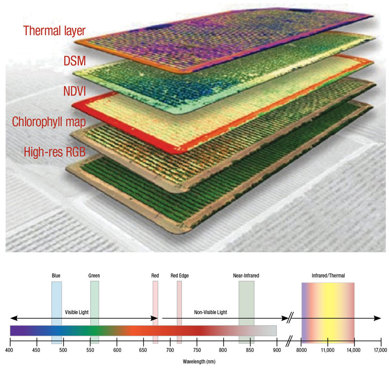 Drone thermal multispectral imagery