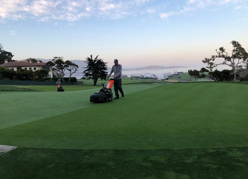 Pebble Beach 14