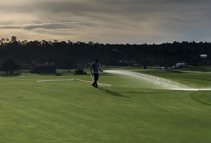Watering Pebble Beach