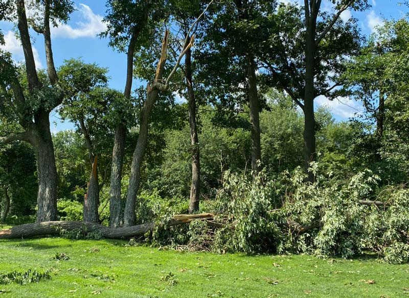 Isaias damage golf course
