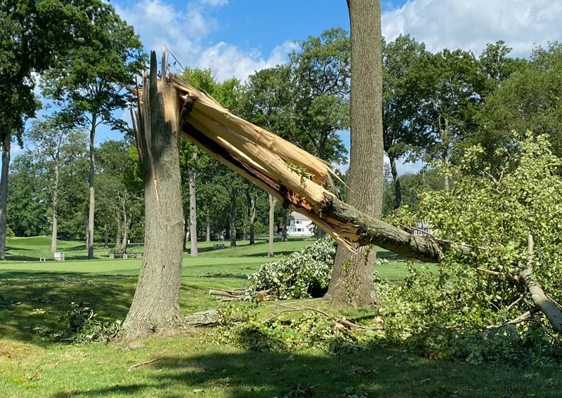 Winged Foot US Open damage
