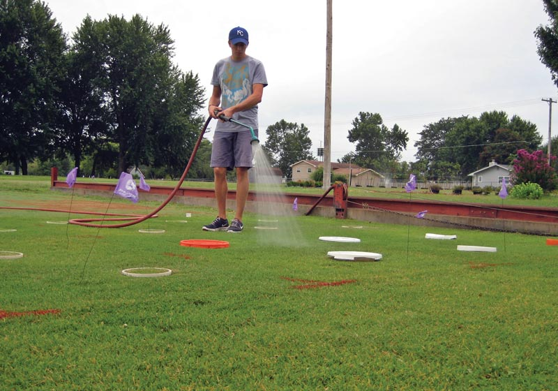 Turfgrass irrigation study