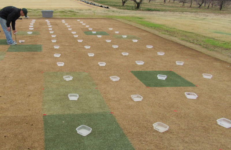 Fall wetting agent application