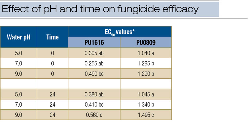 Turf fungicide efficacy