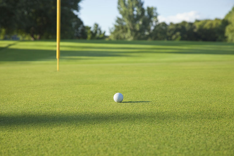 Golf course fertilizer cost