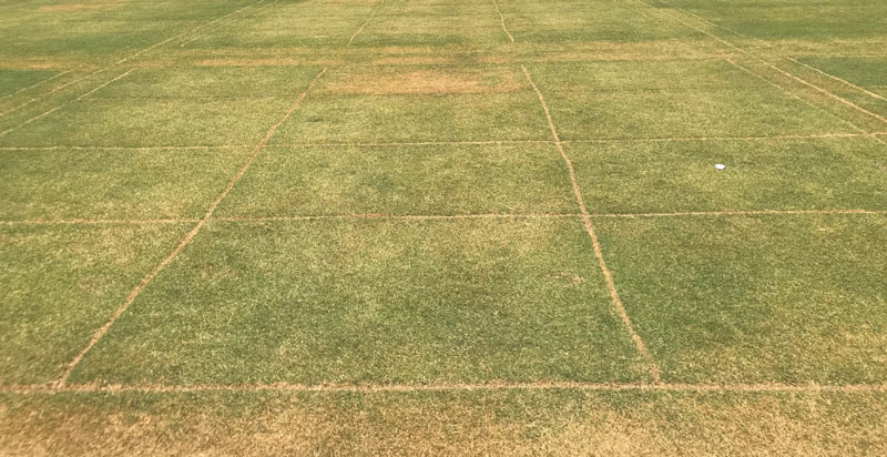 Wetting agents water conservation