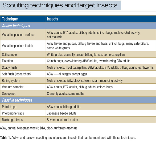 Turf insect scouting techniques