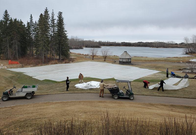 Turfgrass cover winter